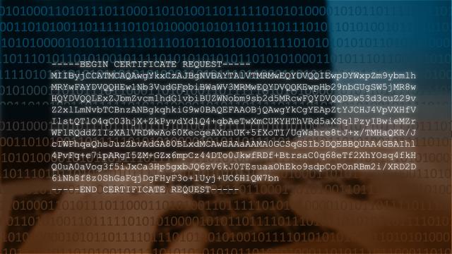 ¿Cuál es el formato del código CSR?