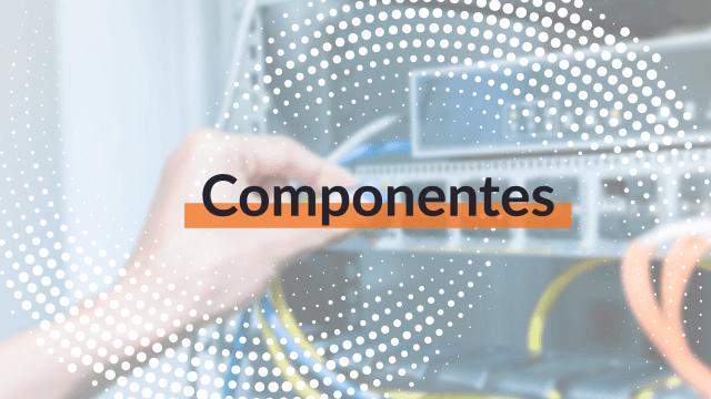 Los componentes principales del cableado backbone son: