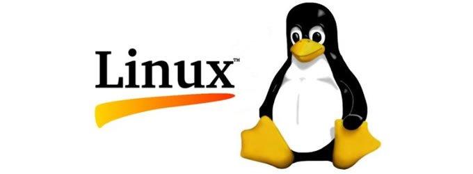 Linux una buena solución a los requerimientos de una Pyme