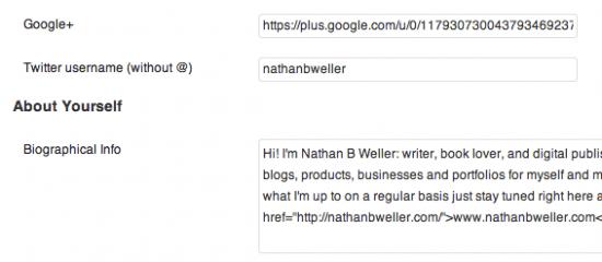 Google Authorship WordPress Contact Info 1 e1367956994370