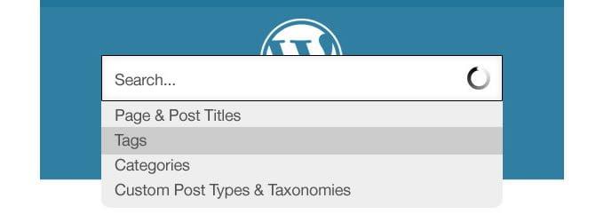 Instalación del Motor de búsqueda personalizado google (CSE) en WordPress