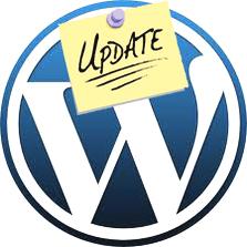 actualizar plugin en wordpress