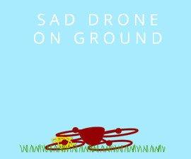 el drone que caza drones
