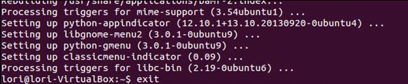 finalizando la instalacion menu clasico gnome
