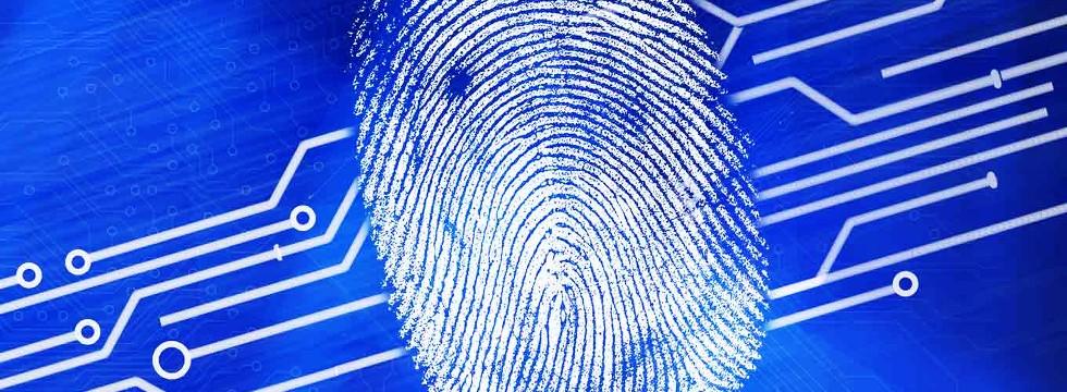 Huellas Digitales, El Futuro De La Seguridad Web