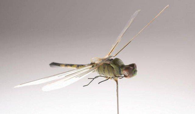 insecto espia de la cia