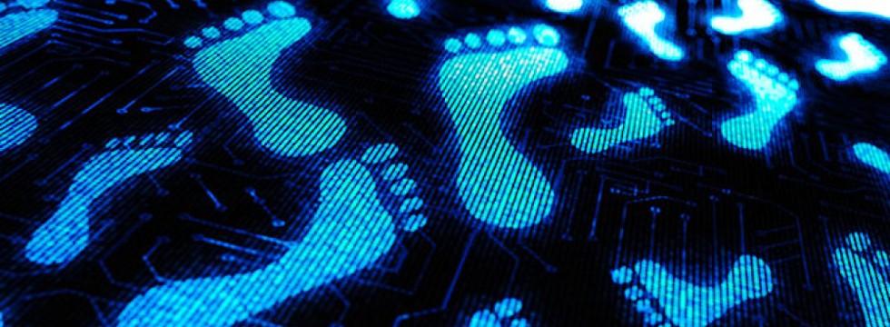 Electrum Bitcoin Wallet Llega Con La Nueva Versión De Tails