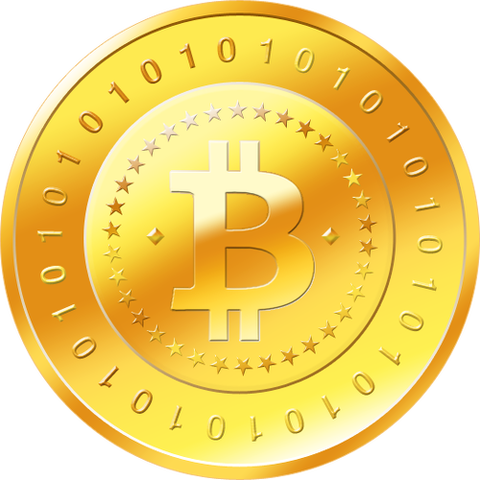 pago moneda bitcoin