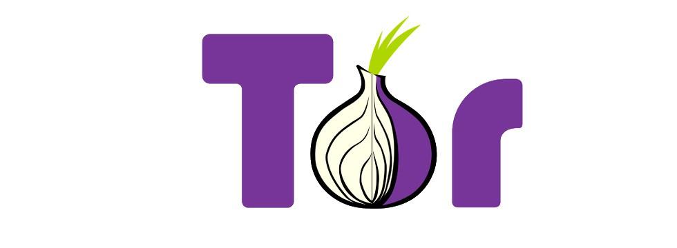 ¿Cómo Proteger El Entorno Digital En Tor?