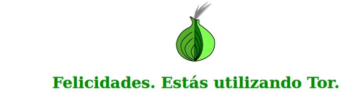 11 Cosas Que Debes Y No Debes Hacer Con Tor