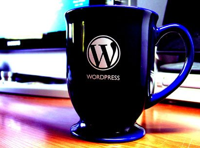 wordpress codificacion